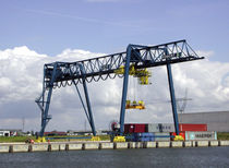 container gantry crane (ship-to-shore) RMG FEMONT