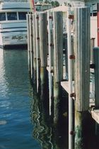 dock fender  Mooring Products Int Inc.