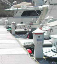 dock power and water pedestal (with integrated light) POWERPORT HyPower
