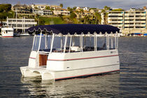 electric boat : pontoon boat 16 LAKE CRUISER Duffy