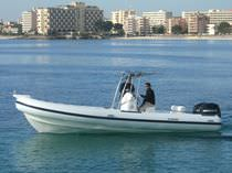 equipped rigid inflatable boat (outboard, twin engine, center console, T-Top) 800 D Scanner