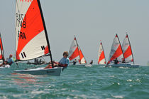 ISAF class sailing dinghy : RS TERA RS TERA LDC Racing Sailboats