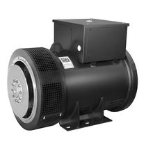 marine alternator  Weg Electric Motors Corp.