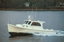 motor-boat : express-cruiser (downeast) DUFFY 31 Atlantic