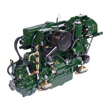 pleasure boat engine : in-board diesel engine 40 - 50 hp (indirect injection, natural aspiration) WATERWAY BETA 50 (50 HP @ 2800 RPM) Beta Marine