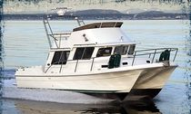 power catamaran : express-cruiser PACIFIC 3200 Sea Sport, Inc