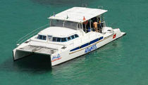 power catamaran : express-cruiser (custom-made) TURIMCAT 430 Dolphin