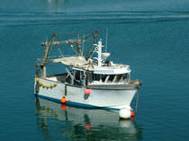 professional coastal fishing-boat (multi-purpose) TBpro-32 TideBreaker