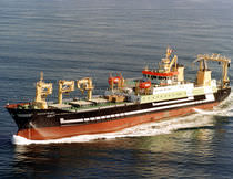 professional fishing-vessel (shipyard) 9436 DWT / MAART JE THEADORA Factorias Juliana, S.A.U.