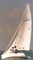 racing keelboat sail : jib (one-design) IDEAL 18 Haarstick