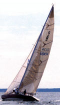 racing sail : mainsail  Haarstick