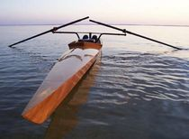rowing shell : recreational single scull OXFORD SHELL ARWEN MARINE