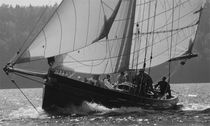 sailboat : classic sailing-yacht (custom-made) Nigel Irens, Westernman, ELEANOR MARY Covey Island Boatworks