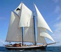 sailboat : classic sailing-yacht (schooner) TREE OF LIFE Covey Island Boatworks