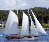 sailboat : classic sailing-yacht (schooner) Bristol Schooner, PAPA Covey Island Boatworks