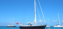 sailboat : cruising sailing-yacht (aluminium) 55� CRUISER SOFT TOP  Van Dam Nordia