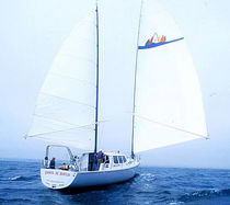 sailboat : cruising motorsailer-yacht (ketch) WYLIECAT 65 Wyliecat