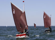 sailboat : day-sailer (trailerable) LA GAZELLE DES SABLE COTRE AURIQUE La GAZELLE DES SABLES