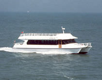 sightseeing boat (catamaran) FERRY ALUMINIUM CATAMARAN Bugari