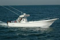 sport-fishing boat : outboard center console boat (twin engine, T-Top) 34 FEET  Al Dhaen Craft