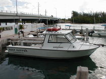 sport-fishing boat : express-cruiser ISLAND 30 Island Hopper International Boat Works, Inc.