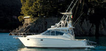 sport-fishing boat : flybridge open express-cruiser (T,Top) 11 FISHERMAN  Portofino