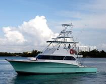 sport-fishing boat : luxury motor-yacht (custom-made) 53' SPORT FISH Newton Boats
