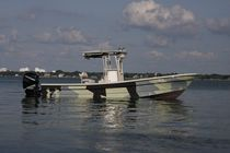 sport-fishing boat : outboard center console boat (T-Top, flybridge) TARPON 26 Panga Fishing Boats