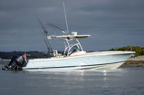 sport-fishing boat : outboard center console boat (twin engine, T-Top) CATALINA 29 Chris Craft