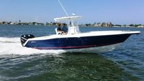 sport-fishing boat : outboard center console boat (twin engine, T-Top) 317 TARPON Stamas