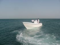 sport-fishing boat : outboard center console boat (twin engine, T-Top) 31 FEET Al Dhaen Craft