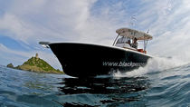 sport-fishing boat : outboard center console boat (twin engine, T-Top) TENDERFISH 28� TTOP Black Pepper
