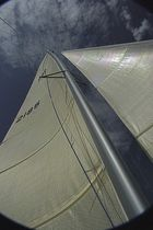 sport multihull sail  Aquarius Sail
