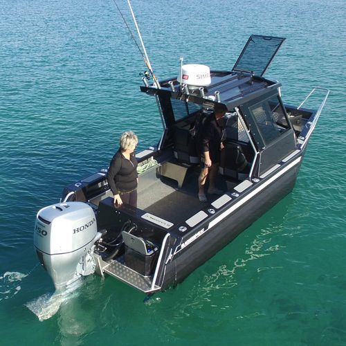 catamaran day cruiser / outboard / with enclosed cockpit / hard-top