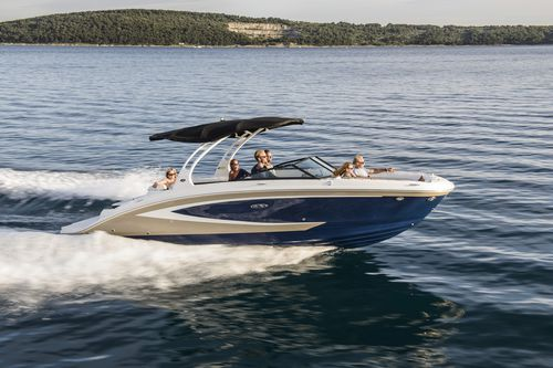 inboard deck boat / 15-person max. / sundeck