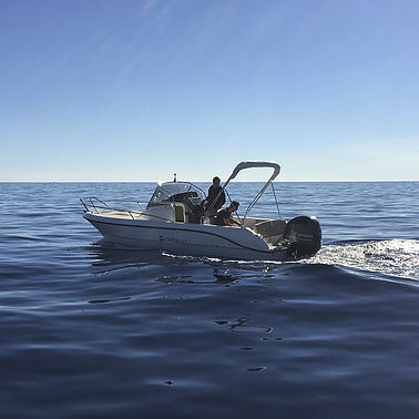 outboard walkaround / center console / 7-person max. / sundeck