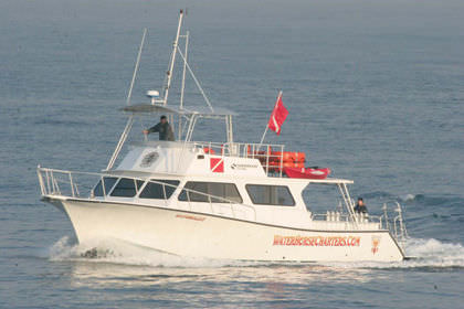 inboard express cruiser / twin-engine / with enclosed flybridge / dive
