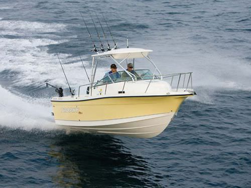 outboard walkaround / sport-fishing