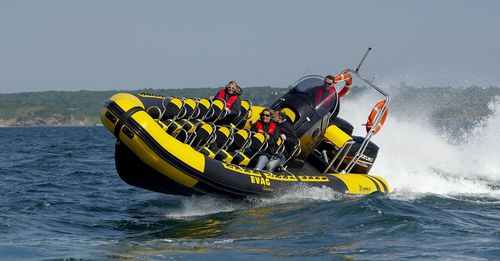 sightseeing boat / outboard / rigid hull inflatable boat