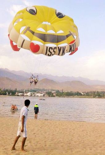 custom parasail / 1-4 persons