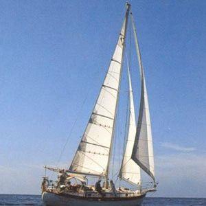 mainsail / headsail / for cruising sailboats / cross-cut