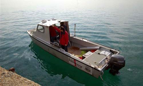 scientific research boat / outboard