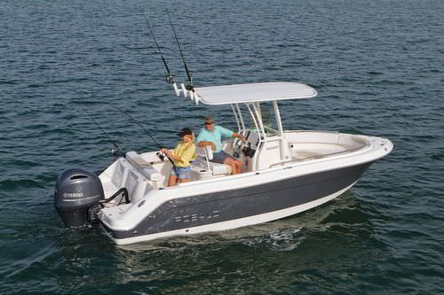 Center console monohull boat / sport-fishing / 10-person max. / with T-top R222 Robalo