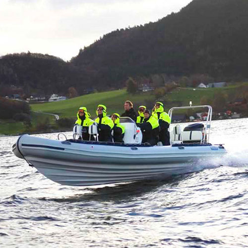 passenger boat / outboard / rigid hull inflatable boat