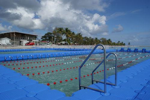dock ladder / fixed / swim / boarding
