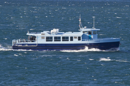 sightseeing boat / electric / aluminum