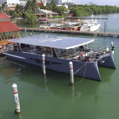 catamaran motor yacht / charter / hard-top