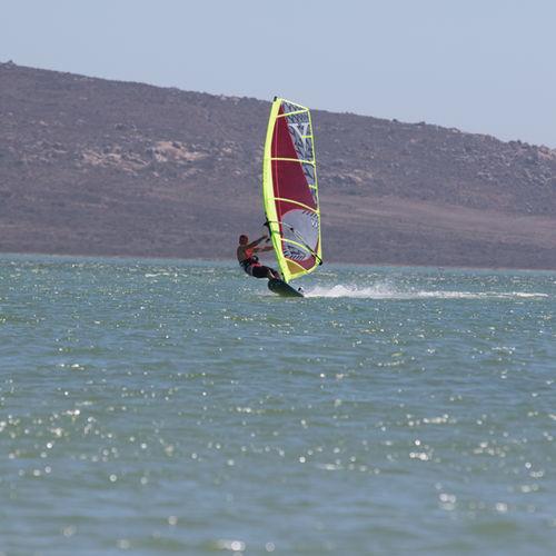 freeride windsurf sail / 4-batten