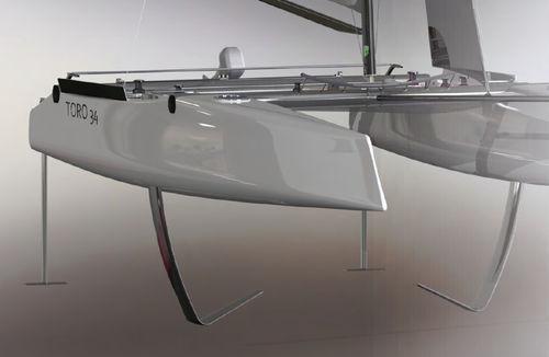 sailing catamaran / racing / open transom / carbon