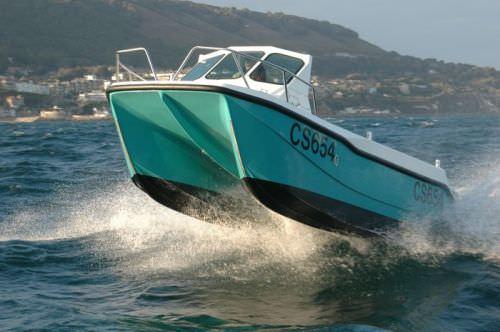 center console catamaran / outboard / twin-engine